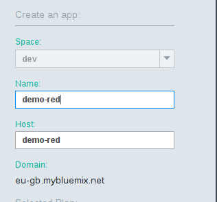 bluemix-name-your-app