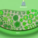 Smart Rain Gardens for Greener Cities