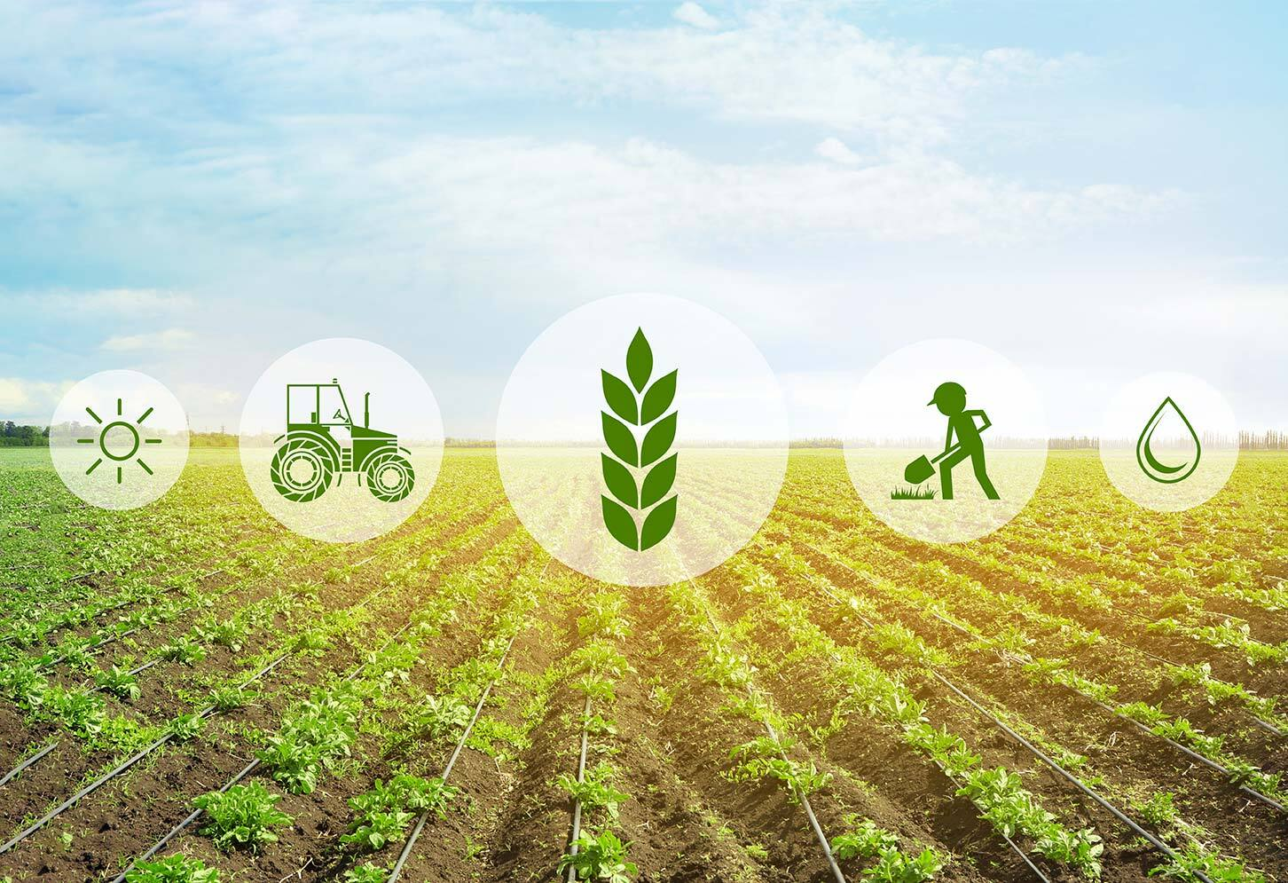 Smart Farming with Scriptr.io and Nebula 2.0
